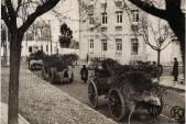 Calle Eugenia de Montijo. Entrada de carros camuflados de las tropas nacionales hacia el sur (1936)