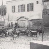 Fuente de la Plaza del Parterre (1926)