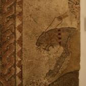Detalle 2 Fragmento del mosáico Las Cuatro Estaciones (siglo IV, Villa romana de Carabanchel Bajo)