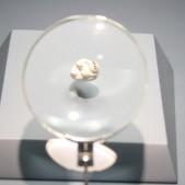 Mola humano (150000 - 127000 años, Cerro de san Isidro)