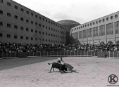 Novillada celebrada en la cárcel de Carabanchel (1996)