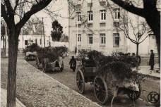 Carros camuflados de las tropas nacionales en la calle Eugenia de Montijo (1936)