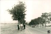 Carretera de Leganés (1965)