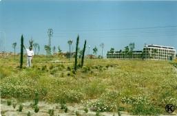 Primer parque construido en Avda. de la Peseta (2002)