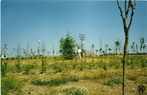 Primer parque de la Peseta (2002)