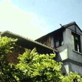 Villa San Miguel 8